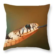 Get Over Here Throw Pillow by Ayse Deniz