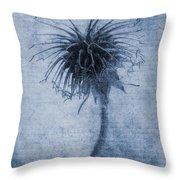 Geum Urbanum Cyanotype Throw Pillow by John Edwards