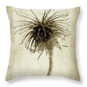 Geum Urbanum In Sepia Throw Pillow by John Edwards