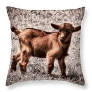 Gizmo Throw Pillow by Wim Lanclus