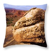 Glacial Erratic Throw Pillow by Adam Jewell