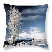 Glencoe Winter Landscape Throw Pillow by Grant Glendinning