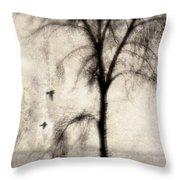 Glimpse Of A Coastal Pine Throw Pillow by Carol Leigh