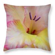 Glorious Gladiola Flower Throw Pillow by Jennie Marie Schell