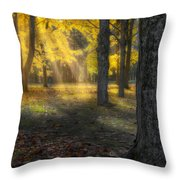 Glowing Maples Square Throw Pillow by Bill Wakeley