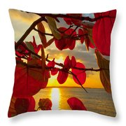 Glowing Red Throw Pillow by Stephen Anderson