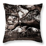 Gnarly Limbs At The Ashley River In Charleston Throw Pillow by Susanne Van Hulst