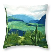 Gods Country Throw Pillow by Anthony Falbo
