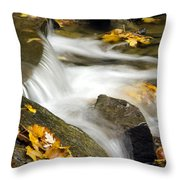 Going With The Flow Throw Pillow by Christina Rollo
