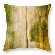 Golden Falls  Throw Pillow by Bill Gallagher