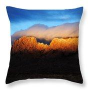 Golden Light Throw Pillow by Vivian Christopher
