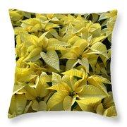 Golden Poinsettias Throw Pillow by Catherine Sherman