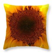 Golden Ratio Sunflower Throw Pillow by Kerri Mortenson