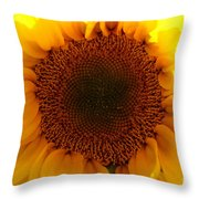 Golden Ratio Sunflower Throw Pillow by Kerri Mortenson