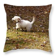 Golden Retriever Puppy Throw Pillow by Andrea Anderegg