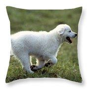 Golden Retriever Puppy Throw Pillow by Jean-Michel Labat