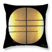Golden Sun Throw Pillow by Cheryl Young