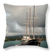 Gone But Not Forgotten Throw Pillow by William Beuther