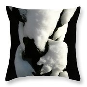 Gotcha Throw Pillow by Shirley Sirois