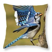 Gotta Go Throw Pillow by Bill  Wakeley