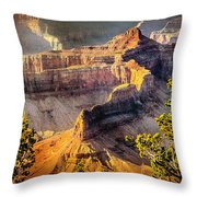 Grand Canyon National Park Throw Pillow by Bob and Nadine Johnston