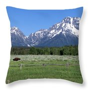 Grand Teton Buffalo Throw Pillow by Brian Harig