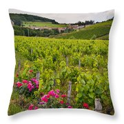 Grapes And Roses Throw Pillow by Allen Sheffield