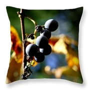 Grapes On The Vine No.2 Throw Pillow by Neal  Eslinger