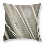 Grass Throw Pillow by Elena Elisseeva