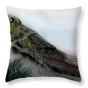 Grasshopper Resting Throw Pillow by Cynthia Adams