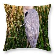 Great Blue Heron Throw Pillow by Edward Fielding