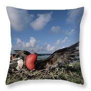 Great Frigatebird Female Eyes Courting Throw Pillow by Tui De Roy
