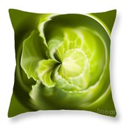 Green Cabbage Orb Throw Pillow by Anne Gilbert