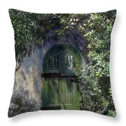Green Door Throw Pillow by Terry Reynoldson