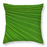 Green Palm Abstract Throw Pillow by Kathleen Struckle