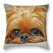 Griff Throw Pillow by Lisa  Phillips