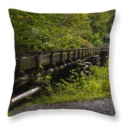 Grist Mill Throw Pillow by Cindy Tiefenbrunn