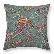 Growth Throw Pillow by James W Johnson