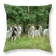 Guardians Of The Forest Throw Pillow by Mountain Dreams