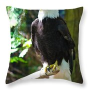 Guarding Liberty Throw Pillow by Roger Reeves  and Terrie Heslop