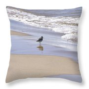 Gull On The Shore Throw Pillow by Richard Gregurich
