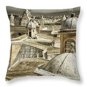 Half Way Up Throw Pillow by Joan Carroll