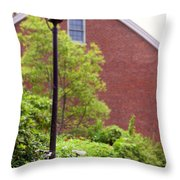 Hanging Around Throw Pillow by K Hines
