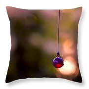 Hanging By A Thread Throw Pillow by Bonnie Bruno