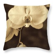Hanging Orchid Throw Pillow by Garry Gay