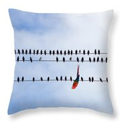 Hanging There Throw Pillow by Les Palenik