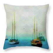 Harbor Fog Throw Pillow by Darren Fisher
