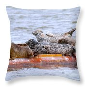 Harbour Seals Lounging Throw Pillow by Sharon Talson