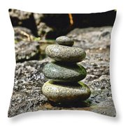 Harmony Throw Pillow by Cheryl Young