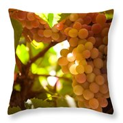 Harvest Time. Sunny Grapes IIi Throw Pillow by Jenny Rainbow